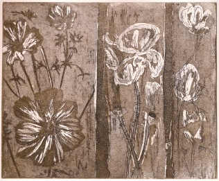'Floral Triptych'. Edition of 8. Etching. 26 X 30cm.