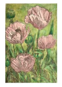 'Poppies'. Varied edition of 5. Etching with watercolour. 20 X 29cm.