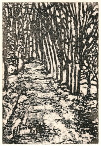 'Winter Path'. Edition of 12. Sugarlift etching. 20 X 26cm.