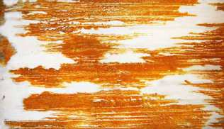 Rust print on silk. 110 x 80cm.