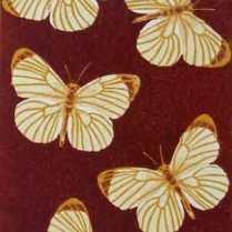 'Mariposas'