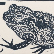 'Allotment ABC, T for toad detail'. Linocut. 9 x 6 cm.