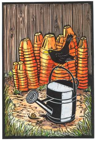 'Blackbird And Watering Can' Hand coloured Linocut. 20 X 30 cm