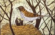 'Nest Of Thrushes' Hand coloured Linocut. 20 X 30 cm