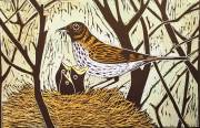 'Nest Of Thrushes' Hand coloured Linocut. 20 X 30 cm