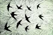 'The Swallows' Lino print. 20 X 30 cm