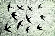 'The Swallows' Lino print. 20 X 30 cm