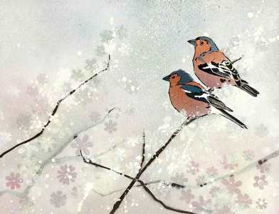 'Chaffinches in Apple Blossom'. Stencilled birds on mixed media.