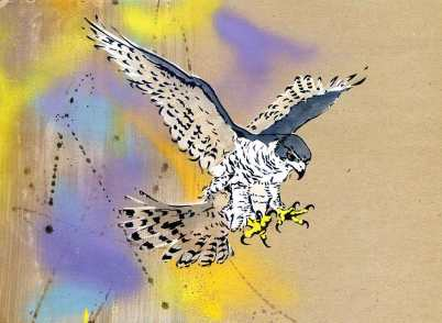 'Goshawk in flight III'. Stencilled bird on brown paper.