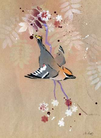 'Waxwing'. Stencilled bird on brown paper.